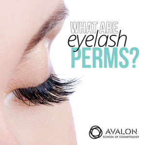 Eyelash Perms