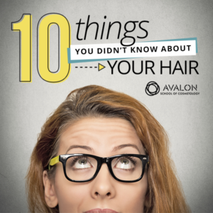 10 Things You Didn't Know about your hair